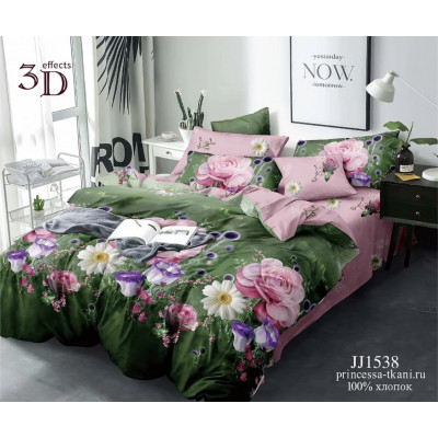 JJ1538(19)